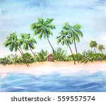 Coconut Trees Over Clear Sky O...