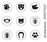 Set Of 9 Editable Animal Icons. Includes Symbols Such As Baboon, Bug, Sow And More. Can Be Used For Web, Mobile, UI And Infographic Design.
