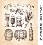 beer set. vector illustration... | Shutterstock .eps vector #559579294