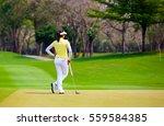 women golfer are standing on...   Shutterstock . vector #559584385