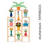Houseplants Or Indoor Plants...