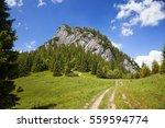 beautiful scenery on the little ... | Shutterstock . vector #559594774