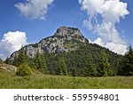 beautiful scenery on small... | Shutterstock . vector #559594801