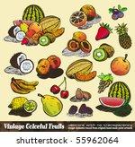 vintage colorful fruits...   Shutterstock .eps vector #55962064
