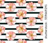 watercolor pattern wild rose... | Shutterstock . vector #559669291