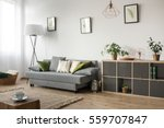 living room with sofa  lamp and ... | Shutterstock . vector #559707847