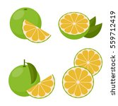 icon grapefruit white. set with ... | Shutterstock .eps vector #559712419