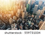 new york city skyline with... | Shutterstock . vector #559731034