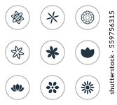 set of 9 simple flower icons.... | Shutterstock .eps vector #559756315