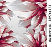 flower vector abstract... | Shutterstock .eps vector #559766575