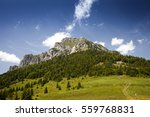 beautiful scenery on the little ... | Shutterstock . vector #559768831