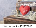 love and valentines day concept ...   Shutterstock . vector #559776019