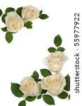 Stock photo white roses 55977922