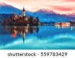 night scene of bled lake in... | Shutterstock . vector #559783429