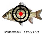fish icon target  spearfishing... | Shutterstock . vector #559791775