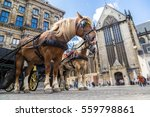 The Horses Carriage In...