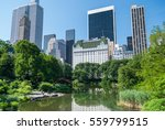 plaza hotel  new york ... | Shutterstock . vector #559799515