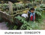 children are blurring hand...   Shutterstock . vector #559803979