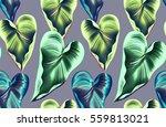 seamless tropical flower  plant ... | Shutterstock . vector #559813021