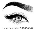 eye makeup | Shutterstock .eps vector #559856644