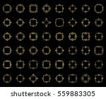 a huge rosette wicker border... | Shutterstock . vector #559883305