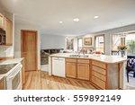 traditional kitchen room design ... | Shutterstock . vector #559892149