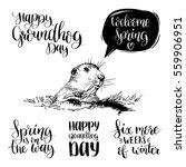 vector happy groundhog day... | Shutterstock .eps vector #559906951
