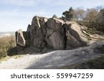 Small photo of Rocky Outcrop