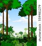 rainforest vector illustration. ...   Shutterstock .eps vector #559981279