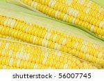 corn   Shutterstock . vector #56007745