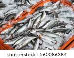 Fish For Sale At Wholesale Fis...