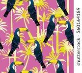 toucan bird vector illustration | Shutterstock .eps vector #560164189