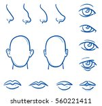 set of different human parts of ... | Shutterstock .eps vector #560221411