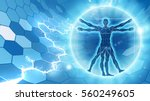 vitruvian man hexagon blue... | Shutterstock .eps vector #560249605