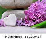 Stone Heart Shaped  Among Lilac ...
