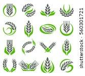 ear spike logo badge icon wheat ...   Shutterstock .eps vector #560301721