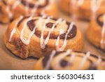 closeup of a cinnamon swirl bun ... | Shutterstock . vector #560304631