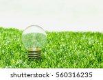 energy light bulb on green... | Shutterstock . vector #560316235