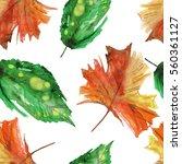 watercolor autumn leaf seamless ... | Shutterstock . vector #560361127