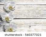 Orchid Flower On Vintage White...
