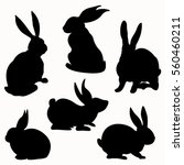 Stock vector rabbit silhouette 560460211