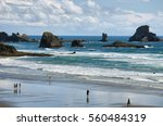 indian beach  usa   june 18 ... | Shutterstock . vector #560484319