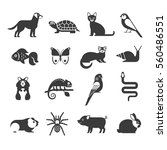 pets icons set. vector... | Shutterstock .eps vector #560486551