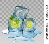 ice cube with grape. vector...   Shutterstock .eps vector #560502415