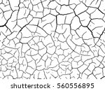 structure of the cracked earth... | Shutterstock .eps vector #560556895