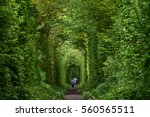 Love Tunnel Natural Education...