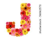j  flower alphabet isolated on...