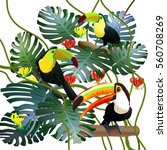 toucans in tropical forests among monstera leaves and flowers gloriosa   Shutterstock vector #560708269