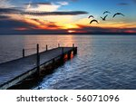 gulls fly over the sea | Shutterstock . vector #56071096