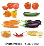 the big colorful group of... | Shutterstock .eps vector #56077450